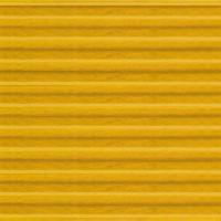 3030-09 TNB (Yellow)