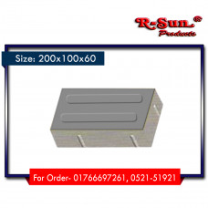 RS-B2-2010-60 (Gray)